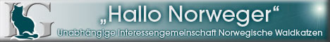 Unabhängige Interessengemeinschaft Norwegische Waldkatzen - Hallo Norweger